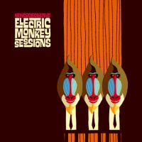 New Cool Collective Electric Monkey Sessions 1