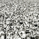 Listen Without Prejudice / 180gr. -hq-