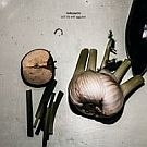 Motorpsycho - Still life with Eggplants