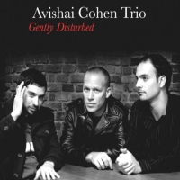 Cohen, Avishai Gently Disturbed