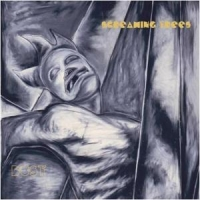 Screaming Trees Dust