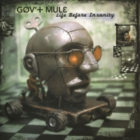 Gov't Mule Life Before Insanity -hq-