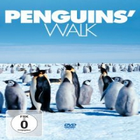 Documentary Penguin's Walk