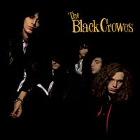 Black Crowes, The Shake Your Money Maker