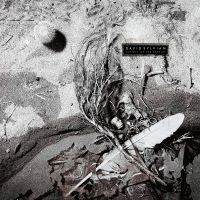 Sylvian, David Secrets Of The Beehive (180 Grams + Download)