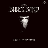 Budos Band Long In The Tooth