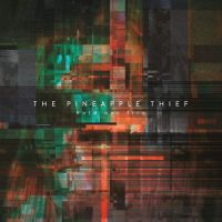 Pineapple Thief Hold Our Fire -digi-