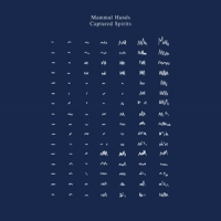 Mammal Hands - Captured Spirits