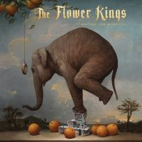 Flower Kings Waiting For Miracles / 2lp+2cd