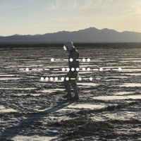 Spiritualized And Nothing Hurt -limited-