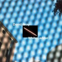 White Ladder -coloured-