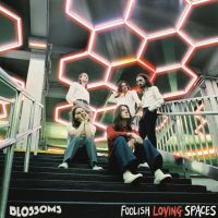 Foolish Loving Spaces (2cd)