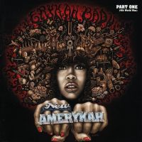 New Amerykah Part One..