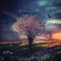 Folklore 3: The Cradle Tree (lp+cd)