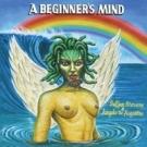 SUFJAN STEVENS A Beginner's Mind